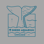 Load image into Gallery viewer, Beluga Tail Chicago Adult T-Shirt