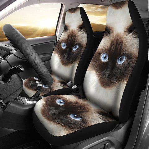 Himalayan Cats Print Car Seat Covers