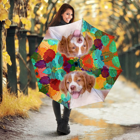 Brittany Dog Print Umbrellas