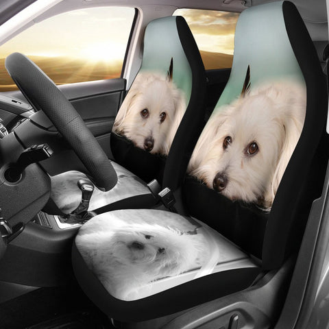 Coton De Tulear Dog Print Car Seat Covers