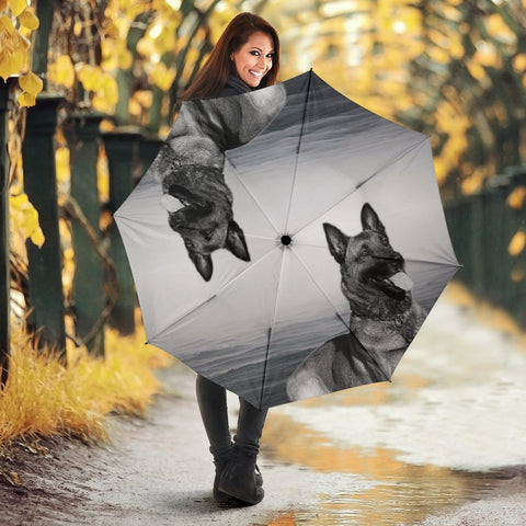Belgian Malinois Print Umbrellas- Limited Edition