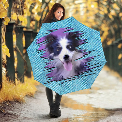 Border Collie Dog Art Print Umbrellas