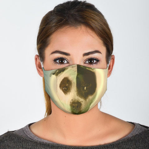 Amazing Staffordshire Bull Terrier Print Face Mask