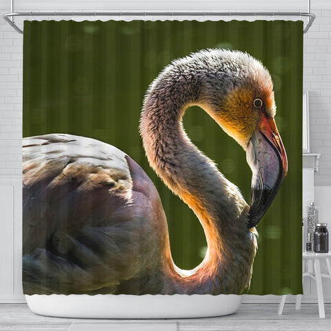 Beautiful Swan Bird Print Shower Curtains