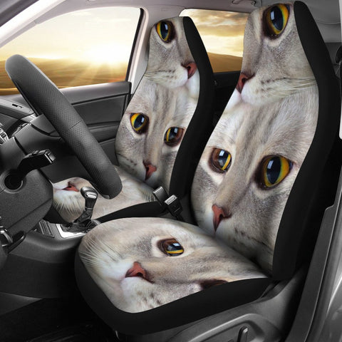 Scottish Fold Cat Print Car Seat Covers