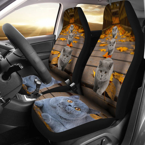 British Shorthair Cat Print Car Seat Covers