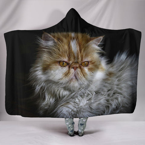 Amazing Persian Cat Print Hooded Blanket