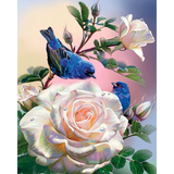 Diamond Painting Birds on a rose