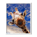 Curious Giraffe Diamond Painting - 1