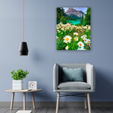 Diamond Painting Mountain daisies