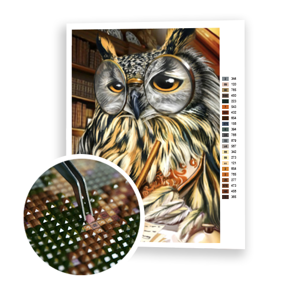 Diamond Painting Sleepy owl