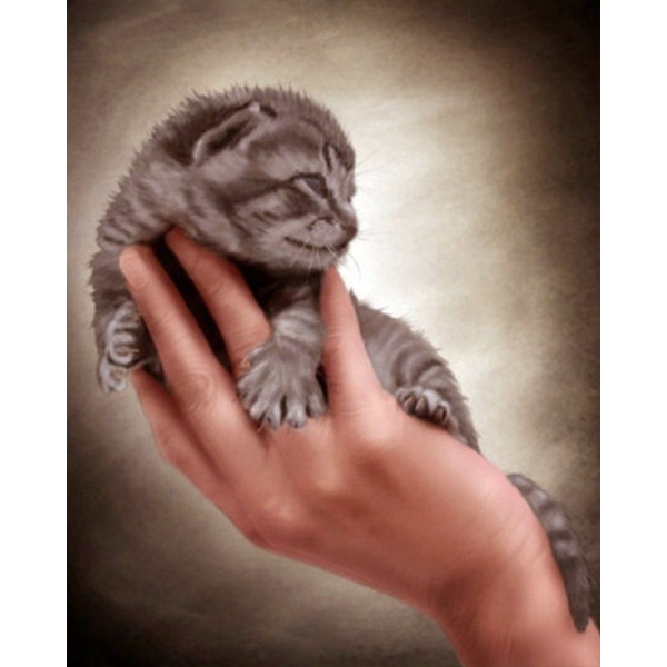Diamond Painting Kitten in a hand