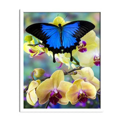 Diamond Painting Butterfly And Orchid