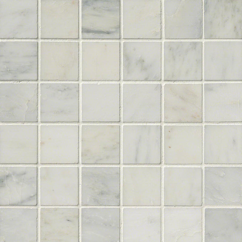 "MS International Marble 12"" x 12"" 2 x 2 Arabescato Carrara"