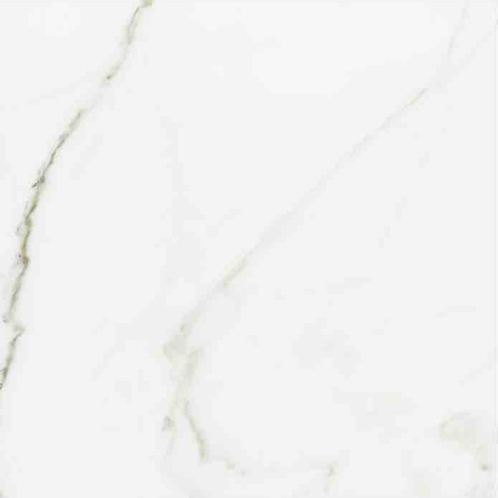 "Angel Collection Calacatta 12"" X 24"" White Polished"