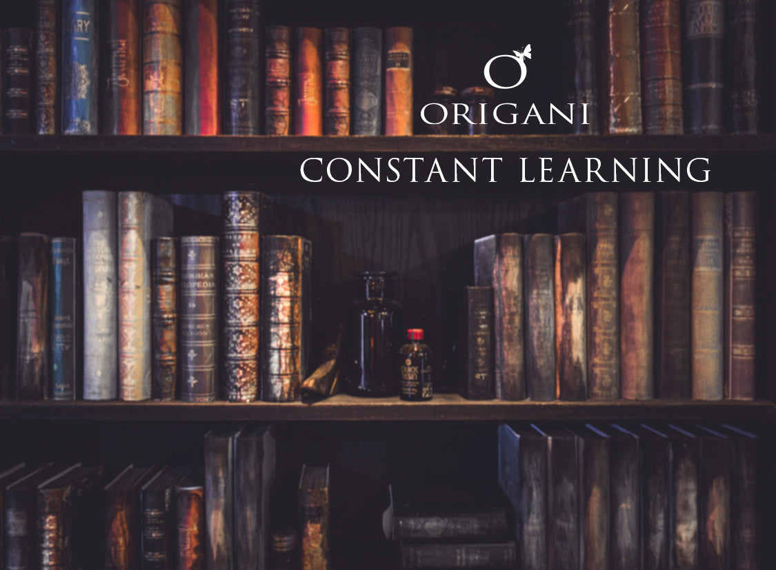 Origani 12 Month Transformation - March - Constant Learning