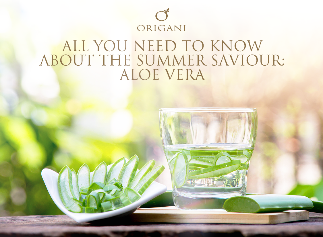 All You Need To Know About The Summer Skin Saviour: Aloe Vera