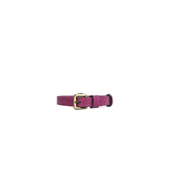 Small Dog Collar in Violet