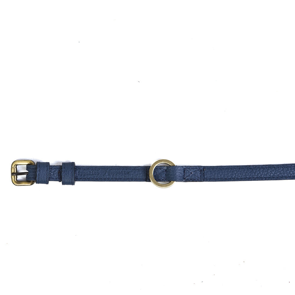 Small Dog Collar in Blueberry