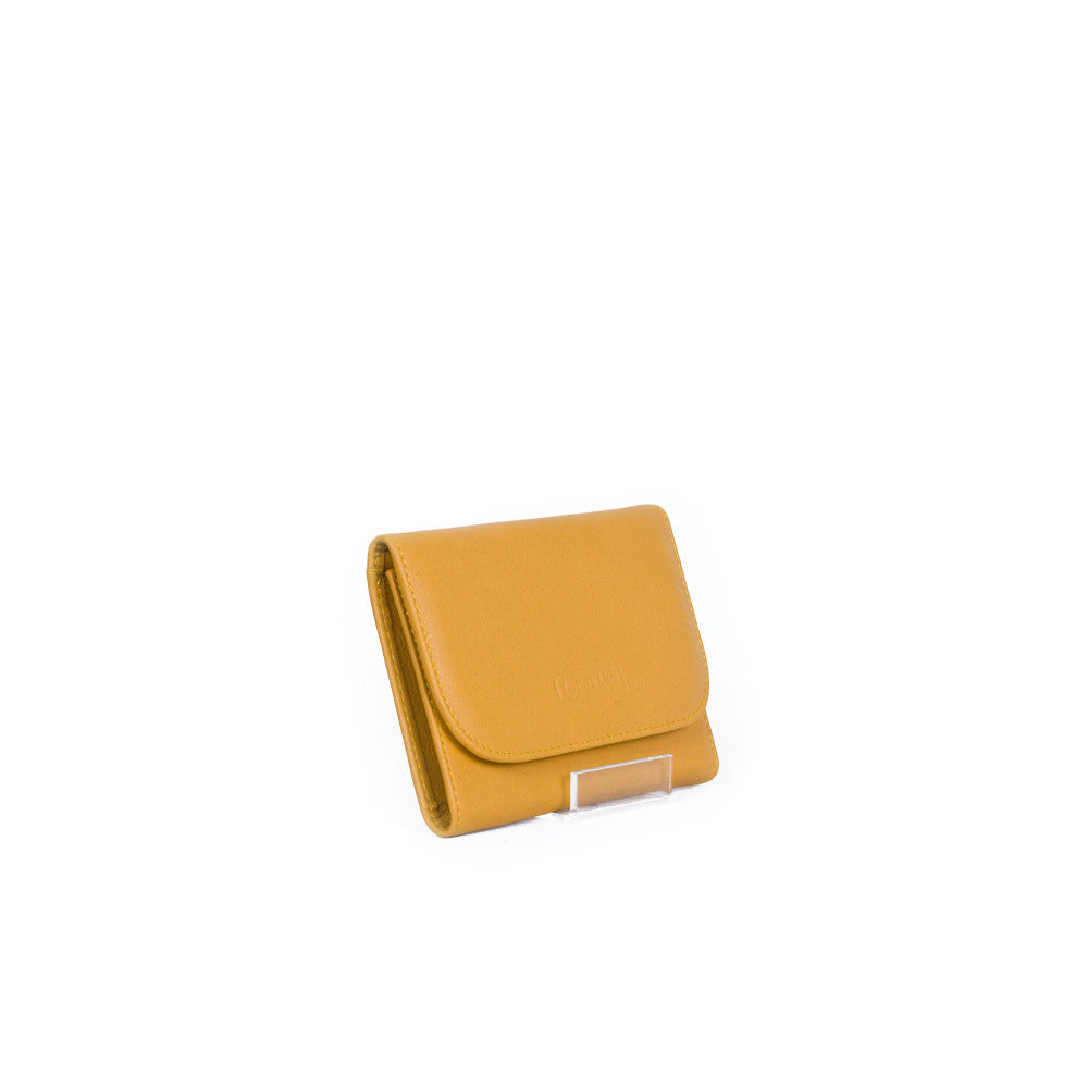Rawan Wallet in Apricot