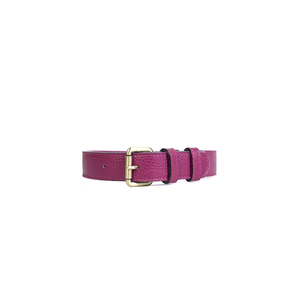 Large Dog Collar in Violet