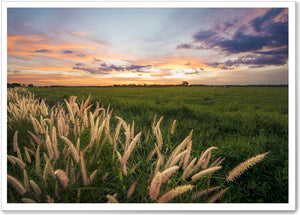 Load image into Gallery viewer, WILD GRASS - KR014