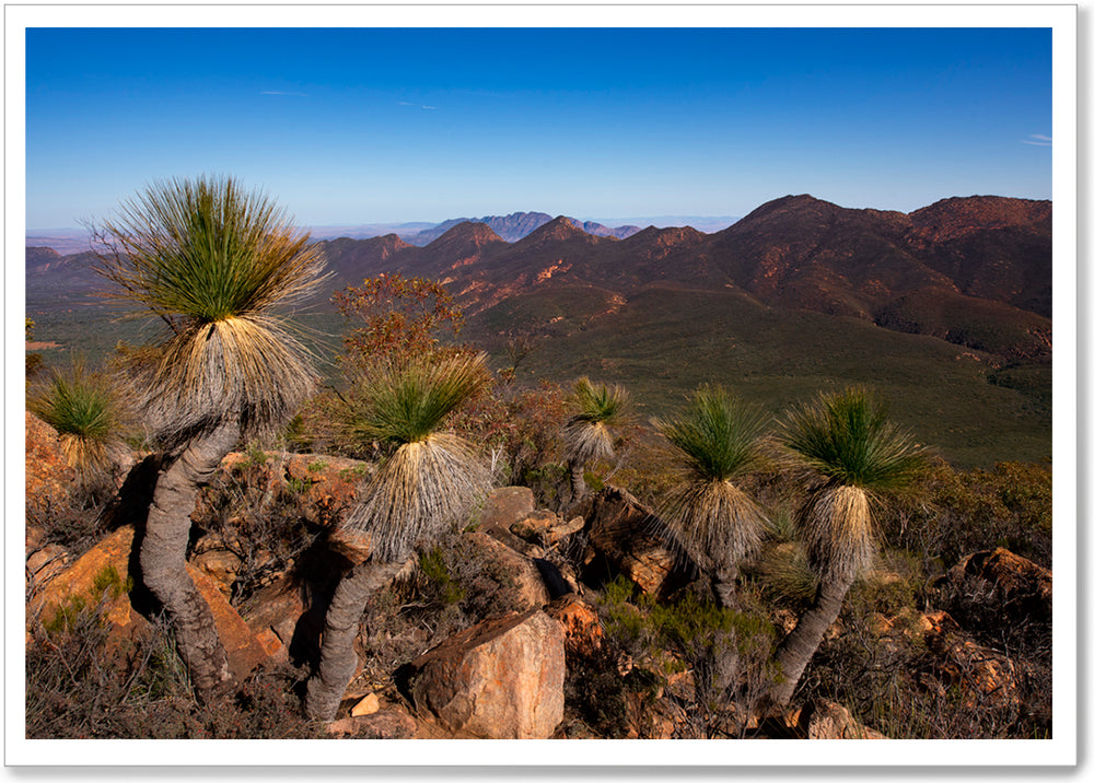 FLINDERS RANGES, SOUTH AUSTRALIA - SA034