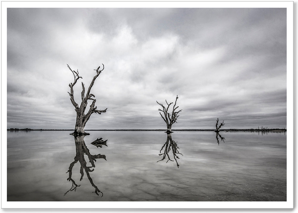 Load image into Gallery viewer, LAKE BONNEY - SA043