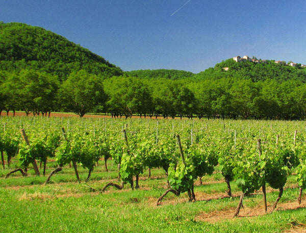 Octave-Maury-Cahors-appellation