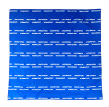 Load image into Gallery viewer, UNCOMMON Pinstripe Bandana - Blue