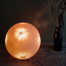 Load image into Gallery viewer, Glowing orange sphere with starburst fronds design, bottle with twigs on the right.