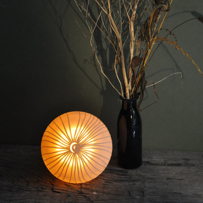 Glowing orange sphere with starburst fronds design, bottle with twigs on the right.