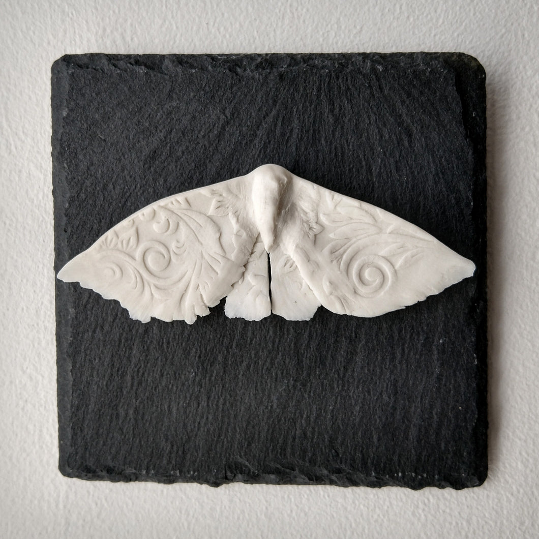 Porcelain Moth 10 Wall Tile