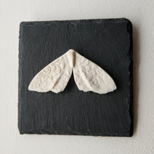 Load image into Gallery viewer, Porcelain Moth 6 Wall Tile