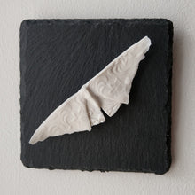 Load image into Gallery viewer, Porcelain Moth 3 Wall Tile