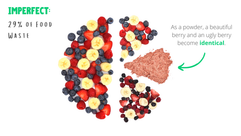 As a powder, a beautiful berry and an ugly berry become identical.