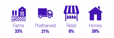 Breakdown of Food Waste Across the Supply Chain