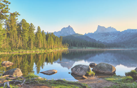 Bokitta blog - How To Plan a Last-minute Summer Vacation?