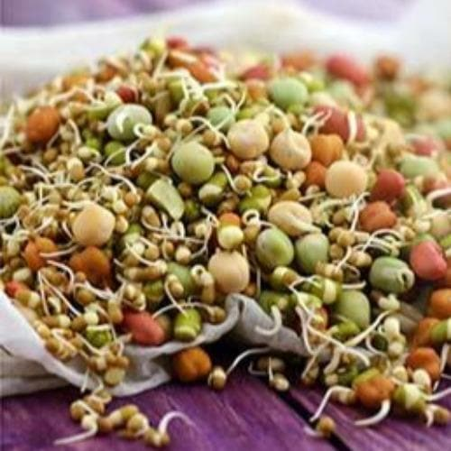 Sprouted Multigrain health mix