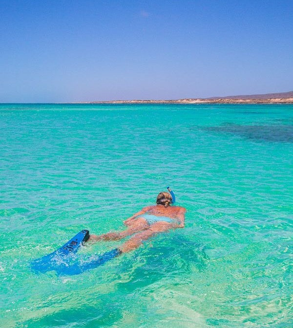 Ningaloo Reef and Swimming with Whale Sharks