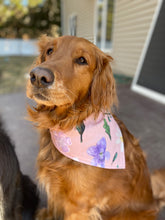 Load image into Gallery viewer, Shop Exclusive Minnesota Wildflowers Bandana