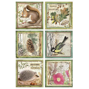DFSA4425 Rice Paper A4 Forest Framed Animals