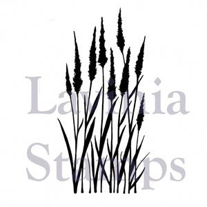 LAV387 Meadow Grass 3.54x1.77""