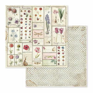 SBB589 Double Sided Single Sheet Spring Botanic Herbarium