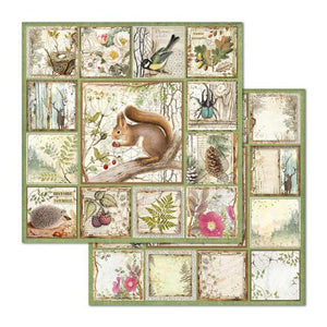 SBB655 Double Sided Single Sheet Framed Forest Squirrel