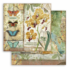 SBB766 Double Sided Single Sheet Amazonia Orchid and Butterfly