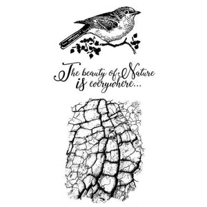 WTKCCR02 HD Natural Rubber Stamp 10x16.5 Cosmos Bird