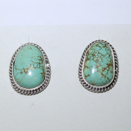 Royston Turquoise Post Earring