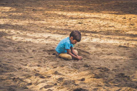 looking for animals in the sand
