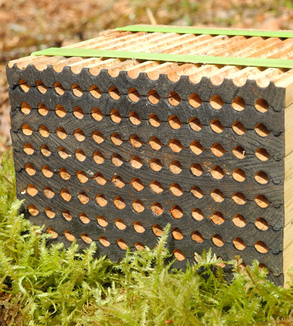 Leafcutter bee nesting block - 9 Tray - 104 holes